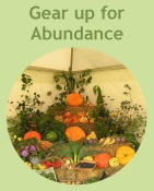 Gear up for Abundance